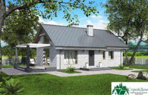 Проект одноэтажного дома SD-350 вид  1-15